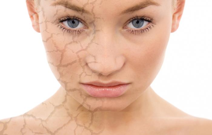 Правила ухода за сухой кожей тела