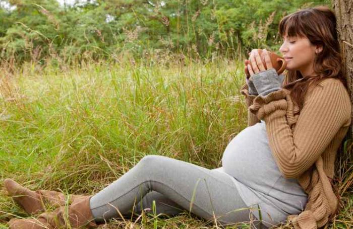 Можно ли беременным принимать Wellness