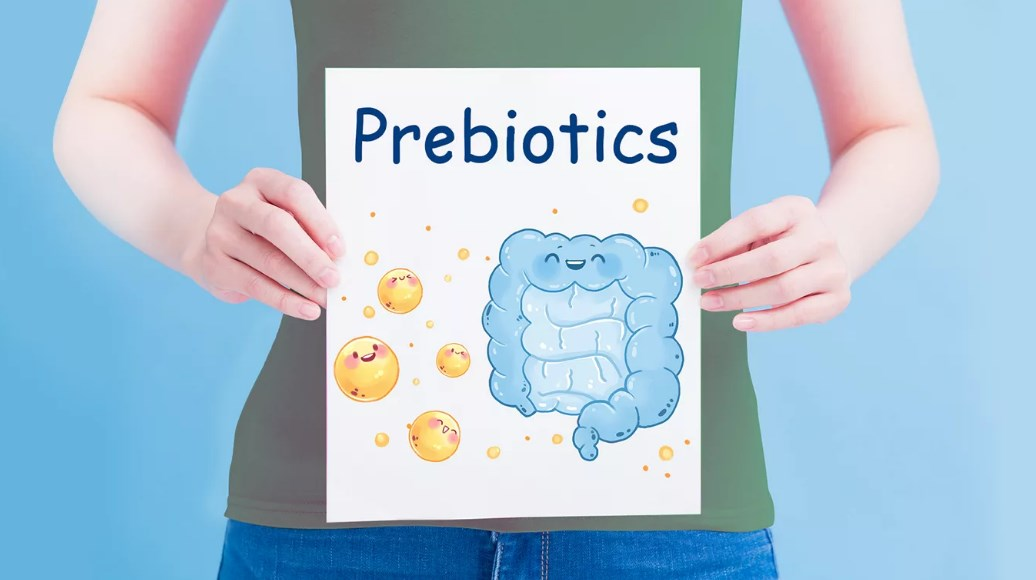 Пребиотический напиток с пищевыми волокнами